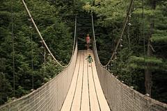 track(0.0), suspension bridge(1.0), canopy walkway(1.0), rope bridge(1.0), bridge(1.0),