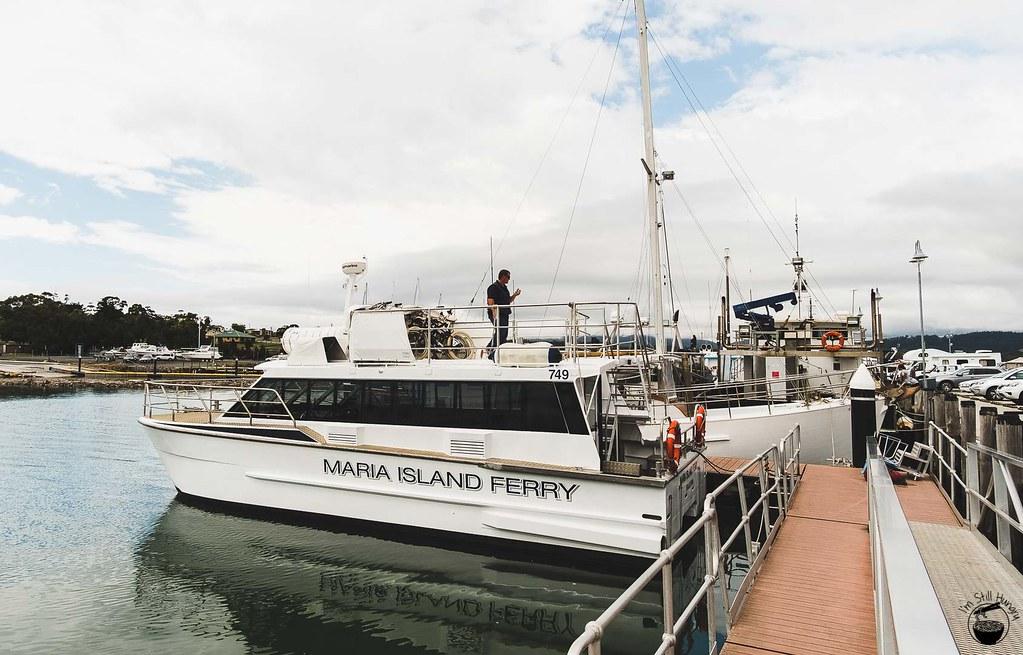 Tasmania 2016-234