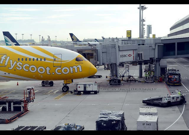 Boeing | 787-8 | Scoot | 9V-OFC | Singapore/Changi | SIN | WSSS