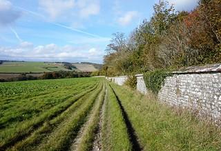 Path towards West Dean