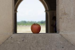 Monastery, Apple