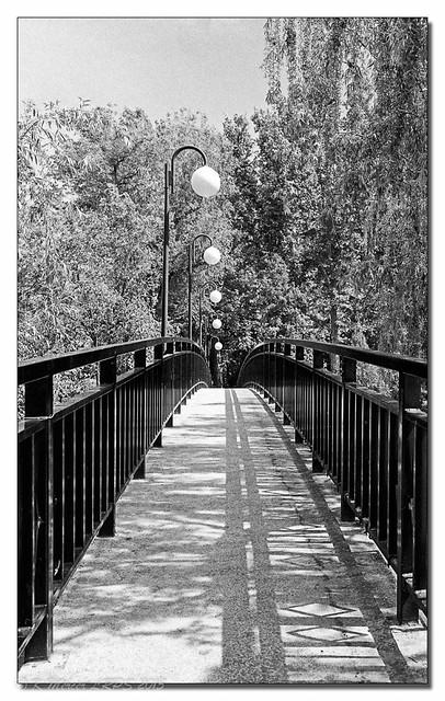 Bridge Over the River Targus