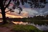 Yarramundi Evenings    NEPEAN RIVER    NSW