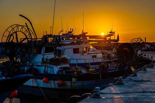 yellow marina sunrise boats golden cyprus larnaca psarolimano