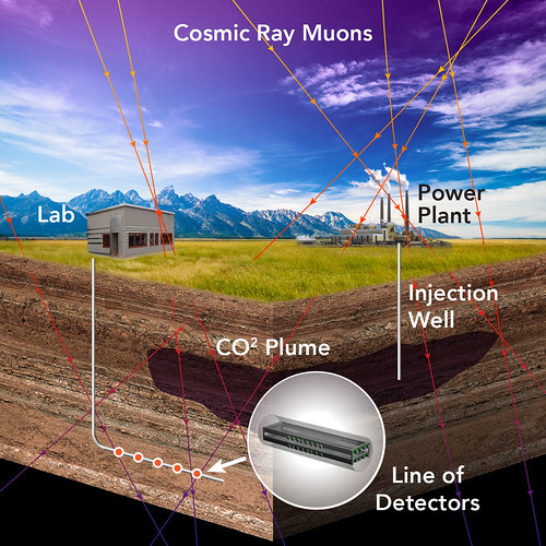 Muon Detector Illustration
