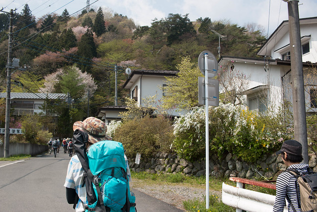 20150425-鳴虫山-0067.jpg