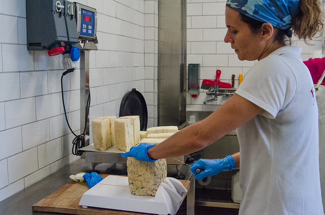 20150522-Cheesemaking-at-Corzano-e-Paterno-Winery-0290