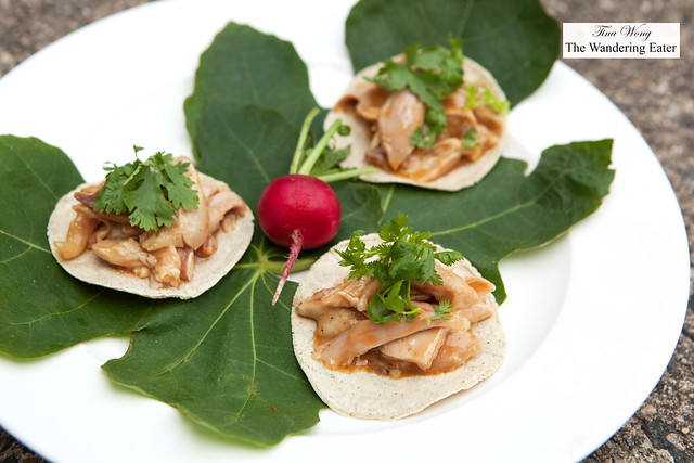 Chicken satay tacos topped with cilantro