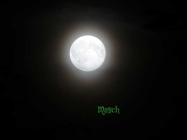 Blue Moon Tag - 31.07.2015
