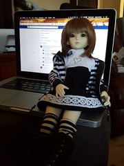 Rowan, my secondhand Dollmore Narsha arrived today, I've been wanting one for 11 years!