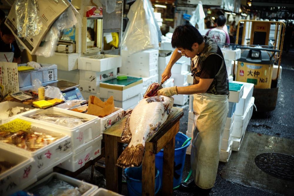 風情文化/探访世界上最具传奇色彩的东京築地魚市 Tsukiji Fish Market11