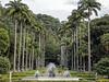A Fonte de Netuno e as Palmeiras Imperiais nos jardins do Palácio Guanabara, Sede do Governo do Estado do Rio de Janeiro, Brasil.