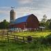 Small photo of Starr Road Amish Farm
