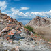 Baikal, Olhon by allexokoss