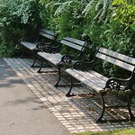 Branch Brook Benches