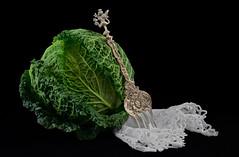Cabbage Elegance