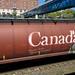 Train graffiti knows where it's at
