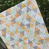 All finished and off to the quilter. New kits coming soon! #SewModDesigns #accuquilt #equilateraltriangles #babyquilt #goodnaturedfabric #rileyblake