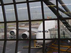 TG676 A380的機内食 還可以 - naniyuutorimannen - 您说什么!