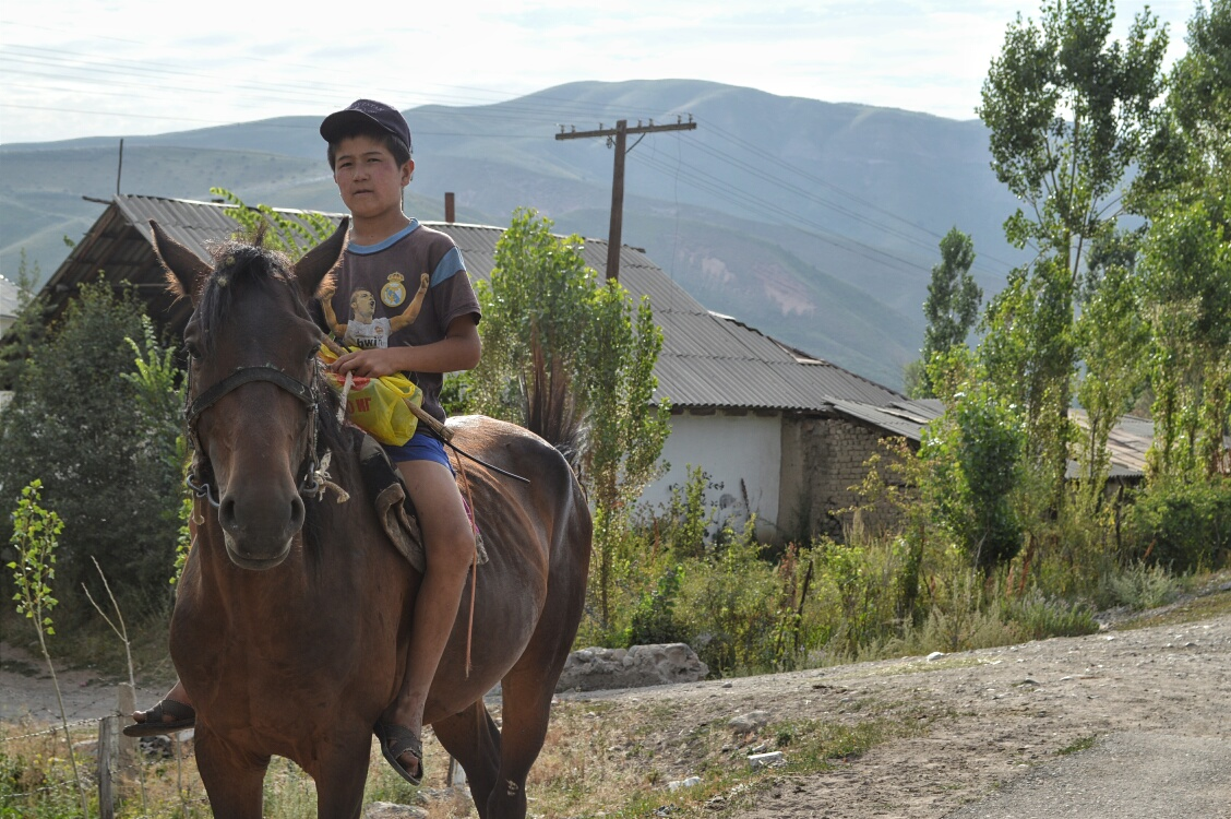 Horse kid