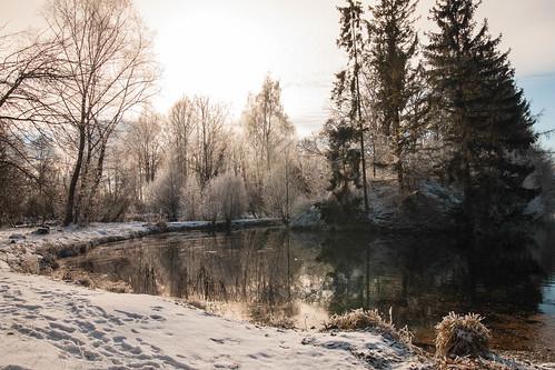Der Weiher im Schnee