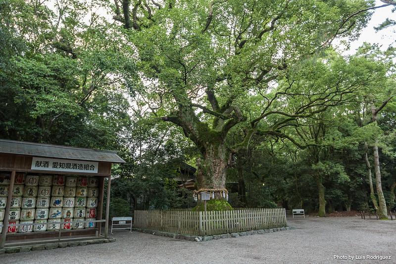 Atsuta Jingu Nagoya-30