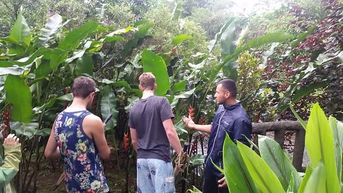 Adi Costa Rica22