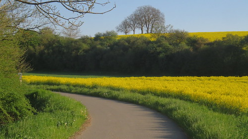 Spring view near Gadheim in Franconia (Bavaria)