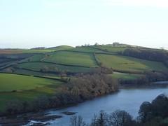 The lush green of south Devon