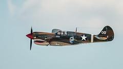 Curtiss P-40N Warhawk -The Jacky C.-_