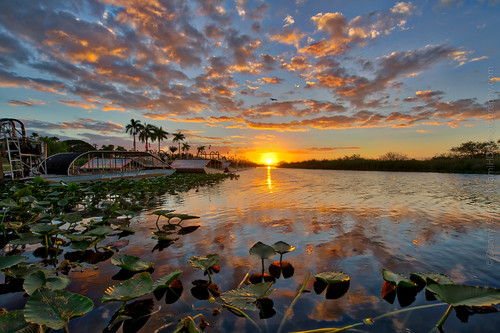 miami airboat beautiful boats clouds color florida green landscape life natural nature outdoor plants reflection sky summer sunset view water winter fortlauderdale unitedstates us