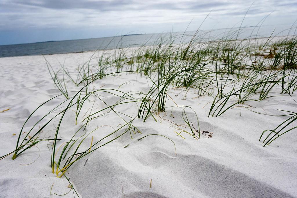 Sand of Beautiful Orange Beach in Gulf Shores, Alabama, Nov. 2016.
