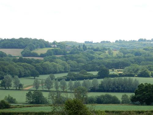 Burwash view