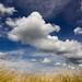 Summer fields by geoffreymaillard