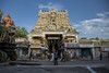 | Nellaiyappar Temple | Tirunelveli | 2015