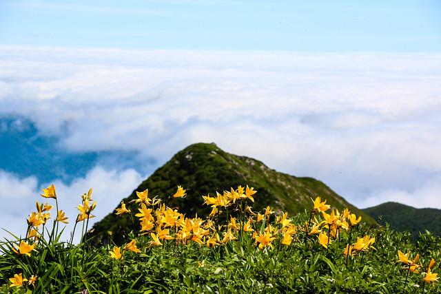 2014-07-22_03200_北海道登山旅行.jpg