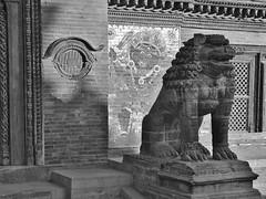 NEPAL,unterwegs  in der Königsstadt Patan, Lalitpur, Durbar Square - lion sculpture, 15150