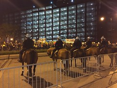 Trump Protest post-election no. 3