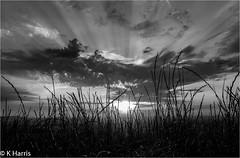 Devils Dyke Sunset Mono
