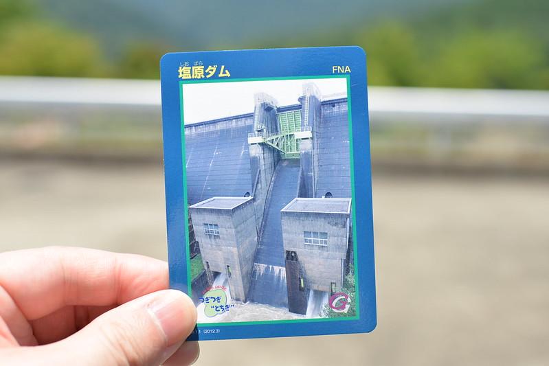塩原温泉大出館の旅 もみじ谷大吊橋 2015年7月12日