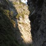 2015_Tirol_074