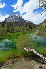 Green or Bishkari Lake