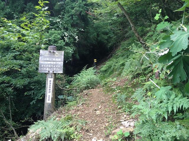 妙法ヶ岳 東海自然歩道