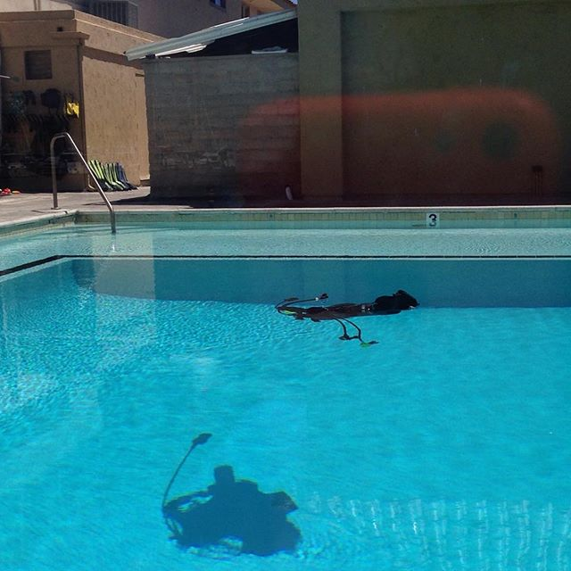 """What is it? It's my buoyancy control device recovering from a great """"Discover SCUBA"""" class at Ventura Dive. GREAT job, Lyle! I'm on for lessons again and SO excited!"""