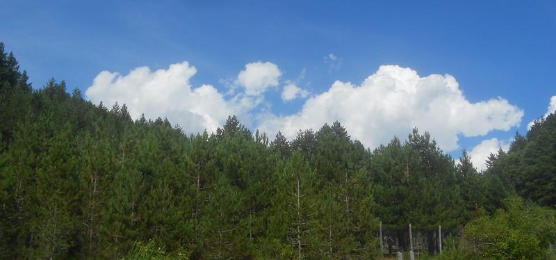 nuvole e Sila, Cupone, Parco Nazionale della Sila, Spezzano della Sila
