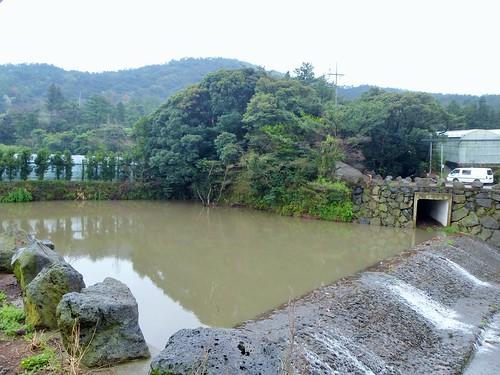 Co-Jejudo-Seogwipo-Sentier Olle 9 (11)