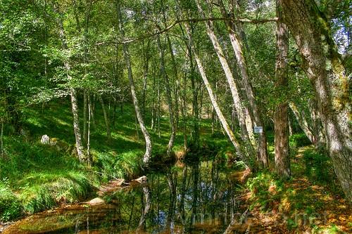 Parque Termal de Carvalhelhos