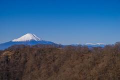 富士山と南アルプスのパノラマが始まる@花立