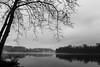 Potomac Mist