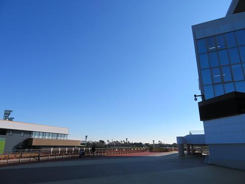 中山競馬場のグランプリロードができた場所
